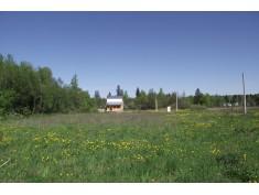 Стародачная поляна-2